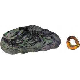 Volumen Turtle ArtKalkarea