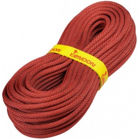 Rope Ambition 10 mm Tendon