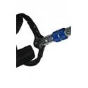 Arnes Laser CR Cassin